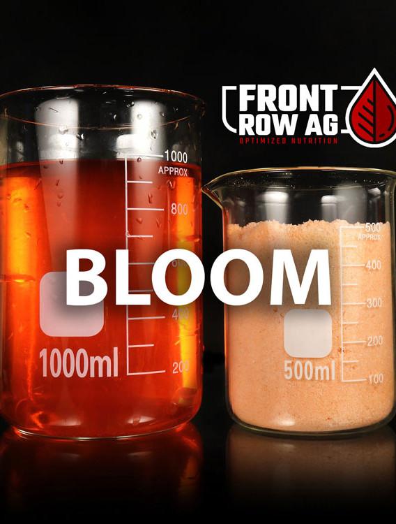 Bloom---2021-logo.jpg