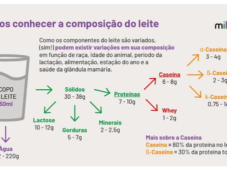 Covid e alimentos: o leite como importante fonte de suprimentos para o combate.
