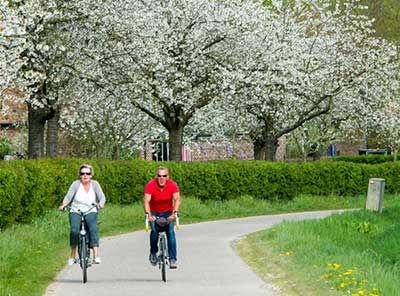 Fietsen in Limburg? Reserveer je fiets online en haal hem af in het Hof van Stayen en ontdek van hieruit kan je direct een prachtige bloesem- of fruitroute op honet fietsroutenetwerk.