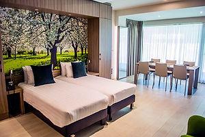 STAYEN-HOTEL-sint-truiden-limburg-skybox