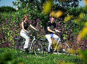 fietsen-haspengouw-limburg.png