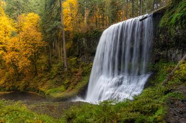 Pacific Northwest-29.jpg