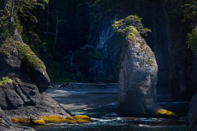Pacific Northwest-8.jpg