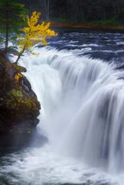 Pacific Northwest-31.jpg
