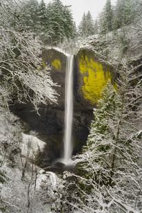 Pacific Northwest-44.jpg