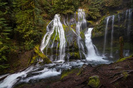 Pacific Northwest-48.jpg