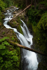 Pacific Northwest-13.jpg