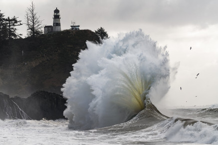 Pacific Northwest-43.jpg