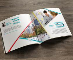 Alumni Testimonials Brochure