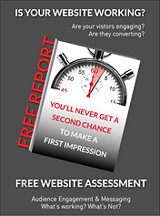 Free Website Assessment 2.png