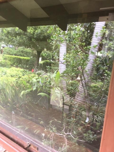 After Window.JPG