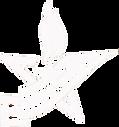 звезда белая.png