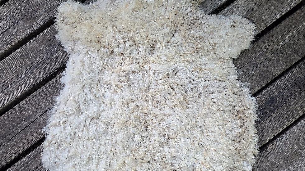 White Gotland  Skin