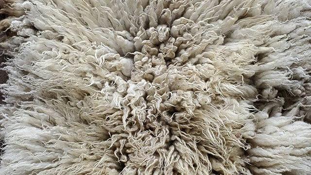 Sheepskin Deposits