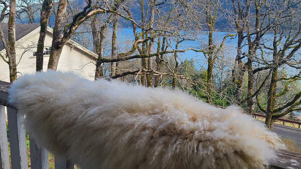 Finn sheepskin