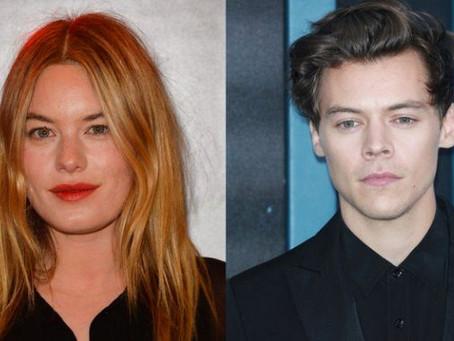 Harry Styles ha roto romance con Camille Rowe
