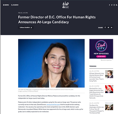 Former Director of D.C. Office For Human Rights Announces At-Large Candidacy