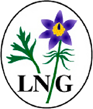 LNG.png