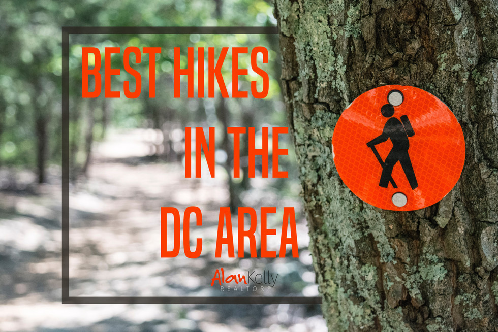 Best Hikes in the DC Area