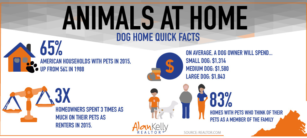 Animals at home.  Dog home quick facts