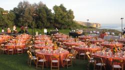 Sunset Orange  on Dana Lawn.jpg