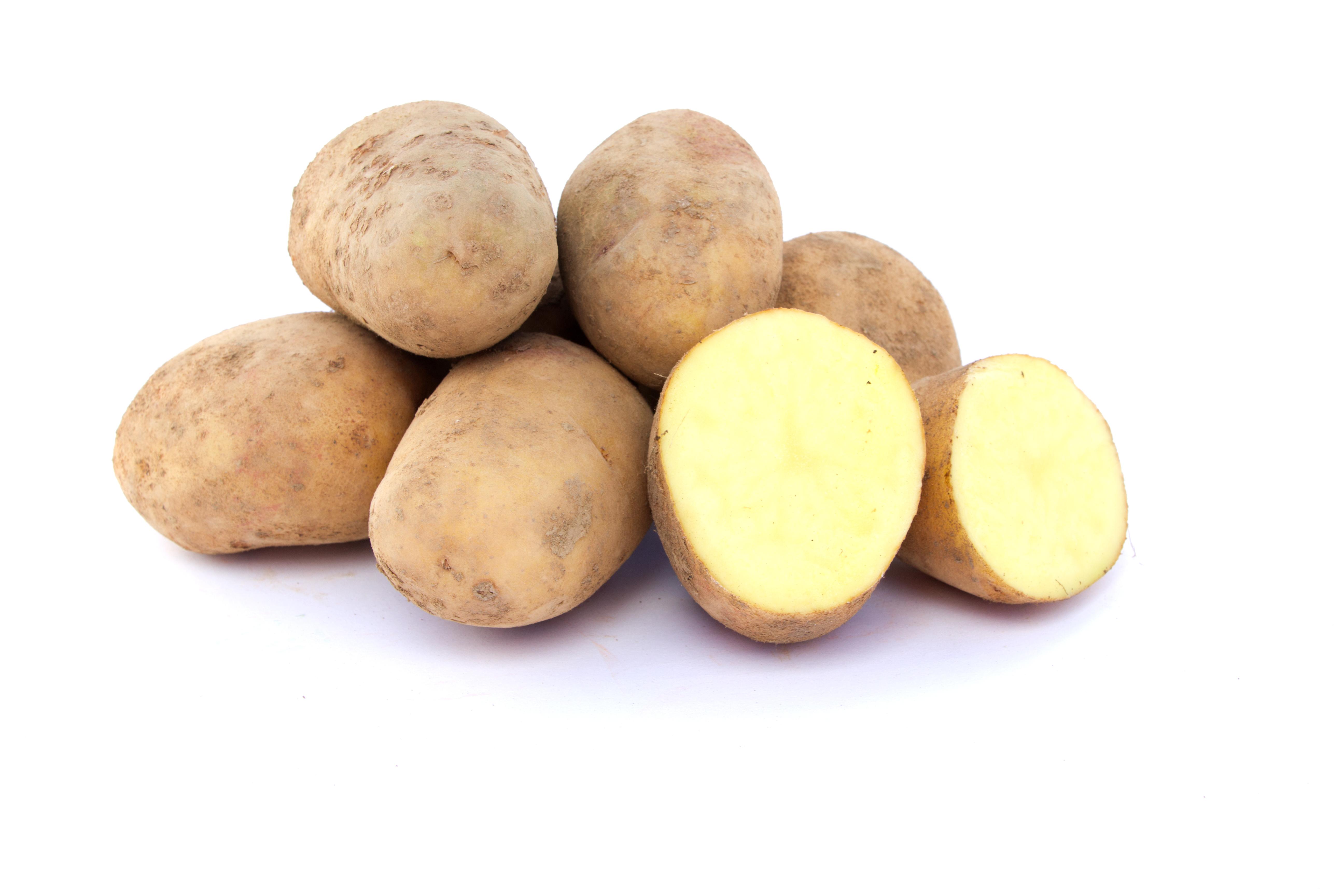 01.patate.IMG_1687