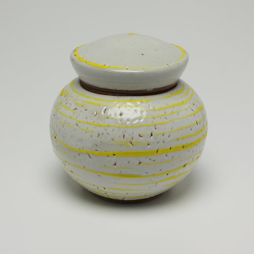 Storage Jar 9