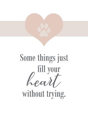 fill your heart.jpg
