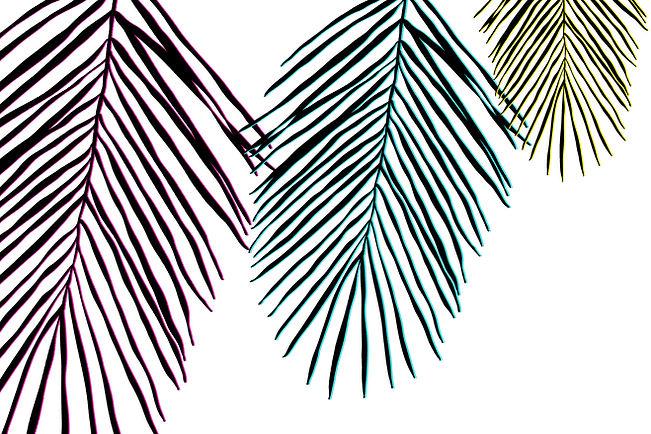 Tropical Leaves 1.jpg