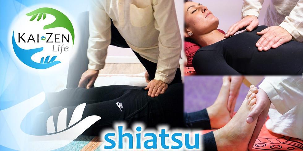 Shiatsu Day