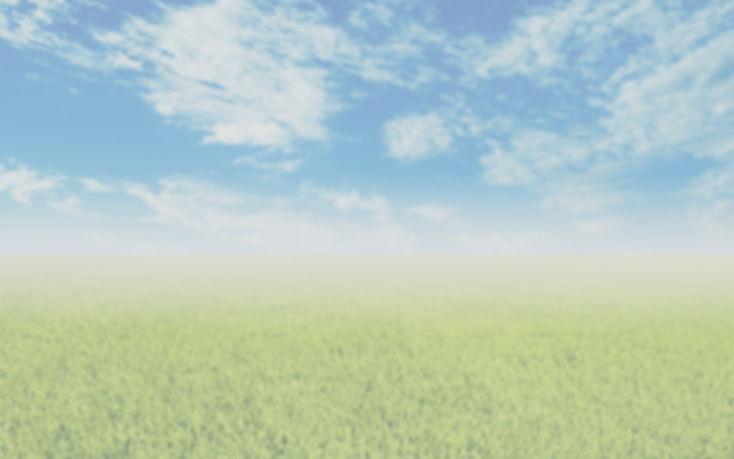 sky-grass-banner_edited.jpg