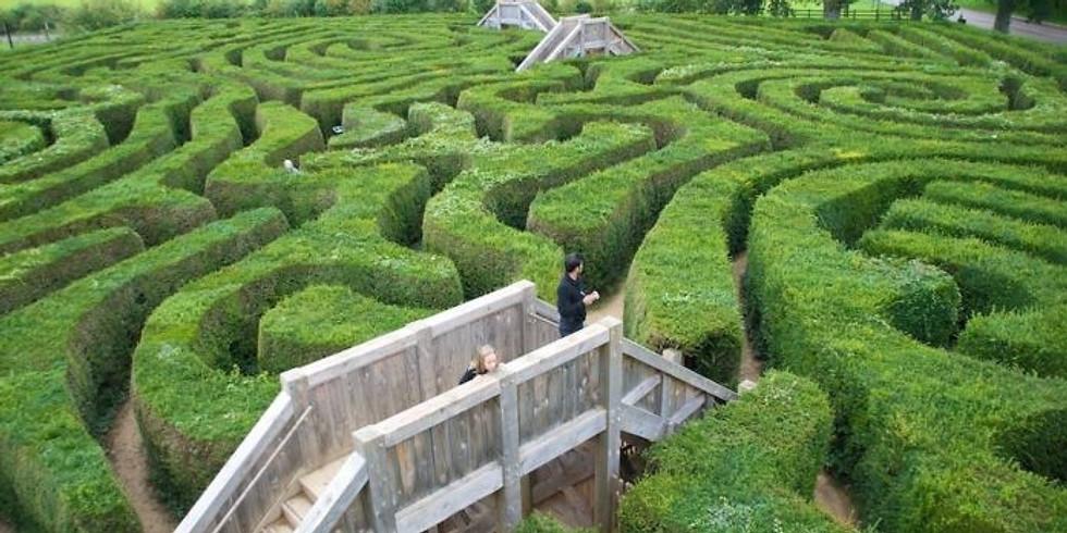 OPEN DAY - Psicoterapia: i labirinti della mente