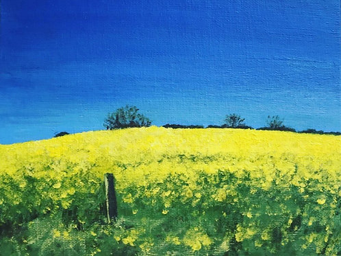 Yellow field (small)
