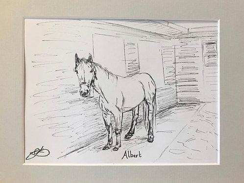 Albert the Horse