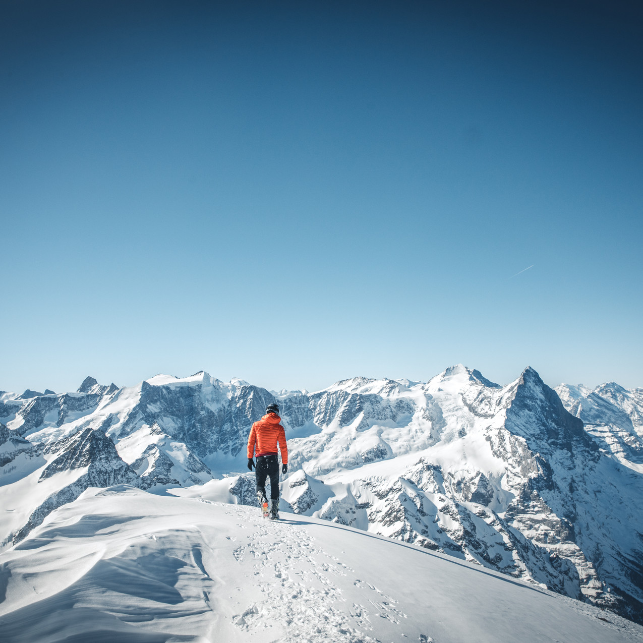 Wetterhorn Gipfel am 24.3.2019