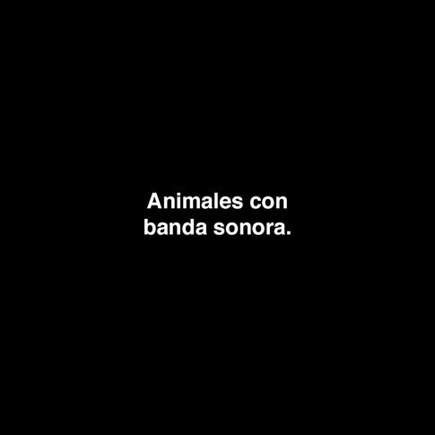 Animales con banda sonora.