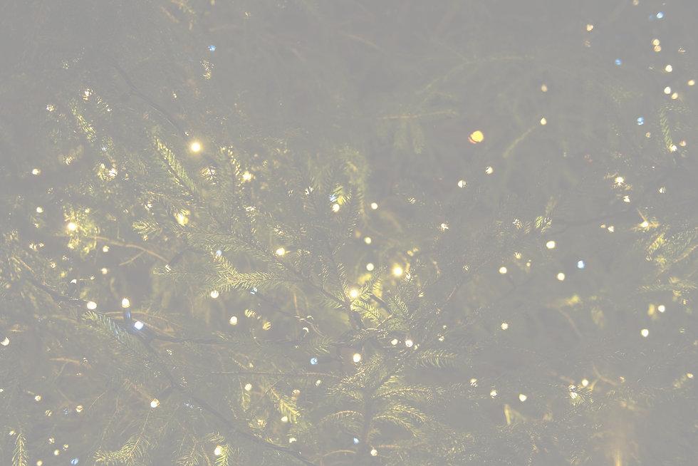 Christmas Lights_edited.jpg