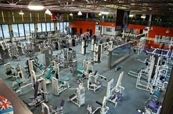 Golden Gym's