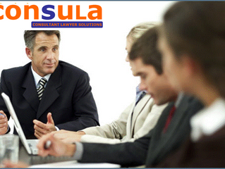 Consultant Lawyer Solutions