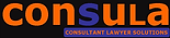 Legal Consultant Start Up Business Support
