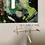 Thumbnail: 20.11.KAO_1.002