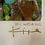 Thumbnail: 20.11.KAO_4.002