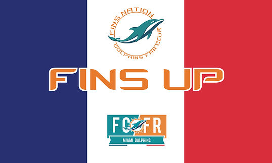 Fins Nation Flag France.jpg