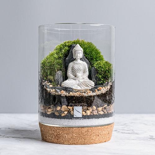Buddha Terrarium Kit