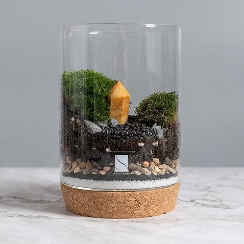 Crystal Terrarium Kit