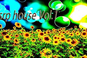 srp-house-Vol.1.jpg