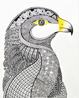 Saqr (Falcon)