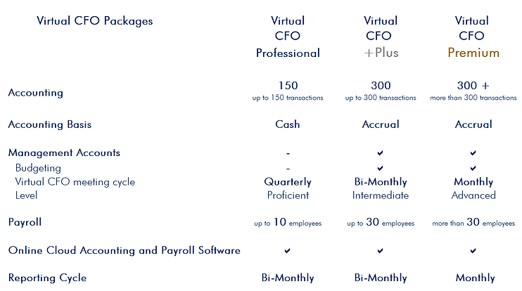 Virtual CFO 1.PNG