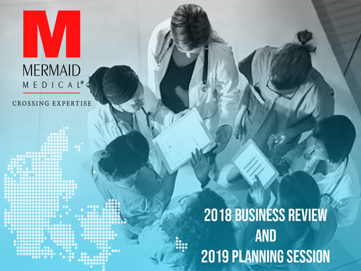 Mermaid Medical 2018 Business Review and 2019 Planning Session