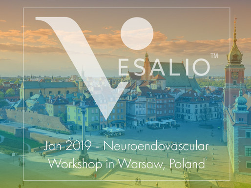 Jan 2019 - Neuroendovascular Workshop in Warsaw, Poland